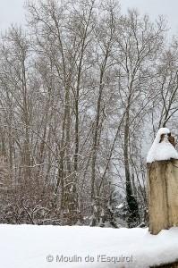 Esquirol-sous-la-Neige-006