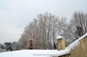Esquirol-sous-la-Neige-007