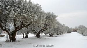 Le Moulin de l'Esquirol sous la neige - 2012