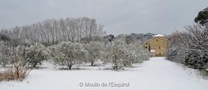 Esquirol-sous-la-Neige-020