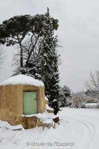 Esquirol-sous-la-Neige-025
